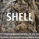 Shell 02