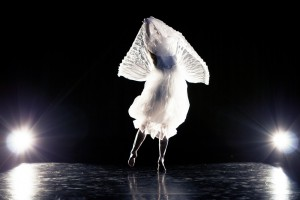Archauz-Pandora---Rikke-Luna-Photography---106-
